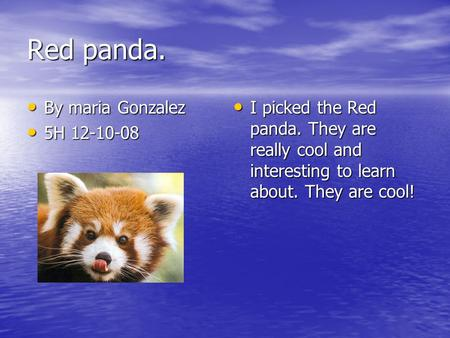 Red panda. By maria Gonzalez By maria Gonzalez 5H 12-10-08 5H 12-10-08 I picked the Red panda. They are really cool and interesting to learn about. They.