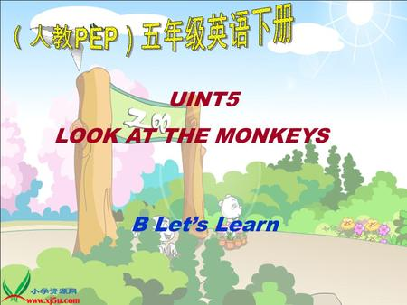 UINT5 LOOK AT THE MONKEYS B Let's Learn. tiger pig rabbit lion monkey elephant bird duck I can see a / an… pig dog.