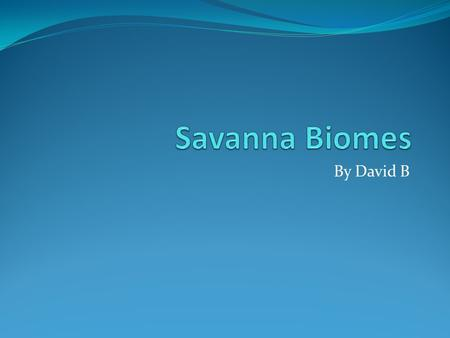Savanna Biomes By David B.