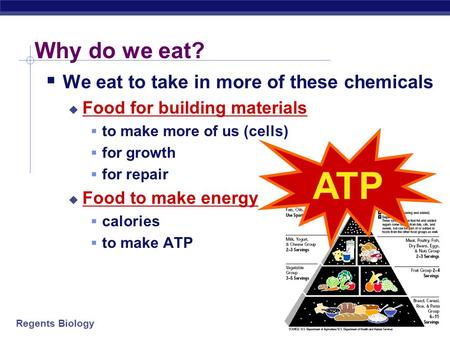 Regents Biology Why do we eat?  We eat to take in more of these chemicals  Food for building materials  to make more of us (cells)  for growth  for.