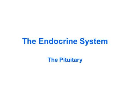 The Endocrine System The Pituitary. Low magnification – the entire Pituitary Gland Posterior Pituitary Pars Intermedia Anterior Pituitary Pars TuberalisPituitary.