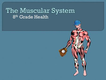 8 th Grade Health 1. How do my muscles work? 2. How can I get stronger?