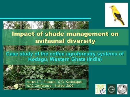 Impact of shade management on avifaunal diversity Case study of the coffee agroforestry systems of Kodagu, Western Ghats (India) Harish T.T., Prakash,,
