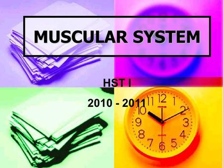 MUSCULAR SYSTEM HST I 2010 - 2011. Structure and Function The human body has more than 600 muscles The human body has more than 600 muscles.