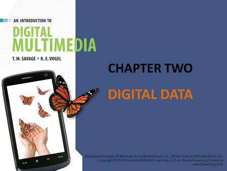 CHAPTER TWO DIGITAL DATA.