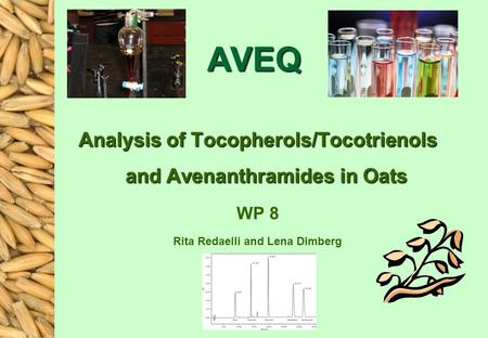 AVEQ Analysis of Tocopherols/Tocotrienols and Avenanthramides in Oats WP 8 Rita Redaelli and Lena Dimberg.