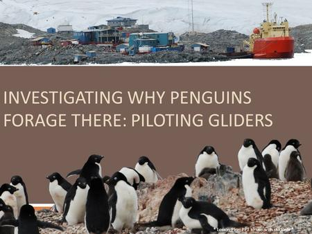 INVESTIGATING WHY PENGUINS FORAGE THERE: PILOTING GLIDERS * Lesson Plan PPT to use with students *