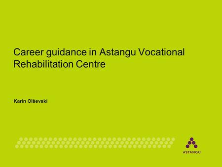 Career guidance in Astangu Vocational Rehabilitation Centre Karin Olševski.