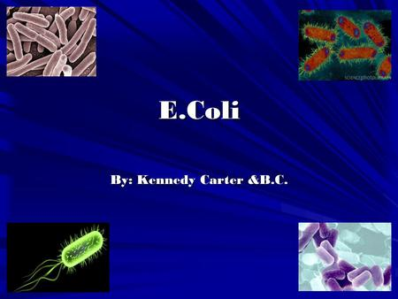 E.Coli By: Kennedy Carter &B.C.. E.Coli is a bacteria that is found in the gut. Most E.Coli has no harm to human health. However, 0157:H7 wich can cause.