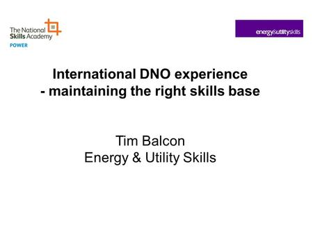 International DNO experience - maintaining the right skills base Tim Balcon Energy & Utility Skills.