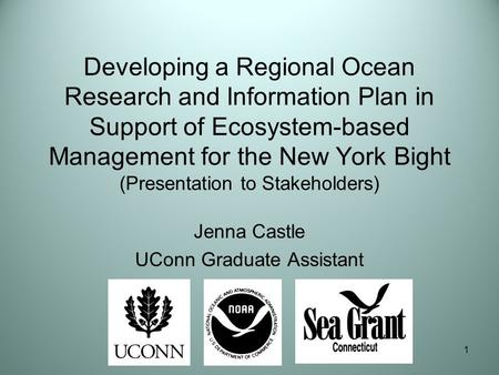 1 Developing a Regional Ocean Research and Information Plan in Support of Ecosystem-based Management for the New York Bight (Presentation to Stakeholders)