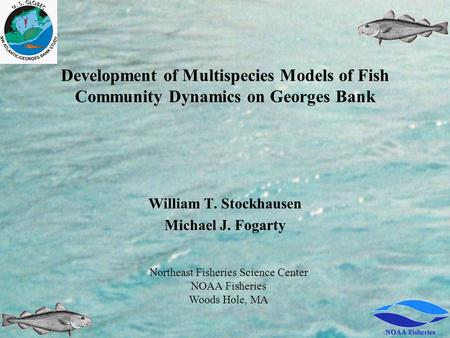Development of Multispecies Models of Fish Community Dynamics on Georges Bank William T. Stockhausen Michael J. Fogarty Northeast Fisheries Science Center.