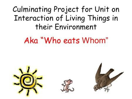 "Culminating Project for Unit on Interaction of Living Things in their Environment Aka ""Who eats Whom"""