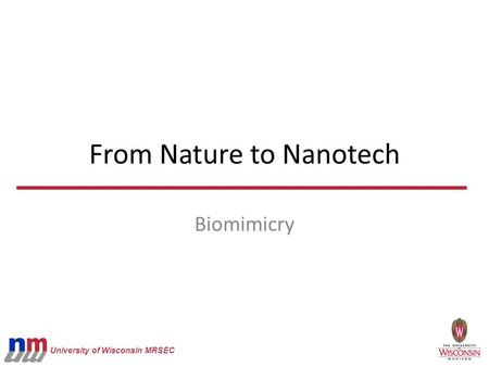 University of Wisconsin MRSEC From Nature to Nanotech Biomimicry.