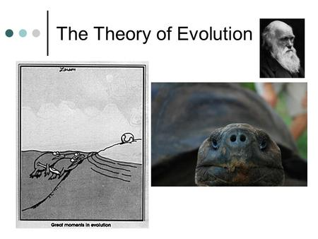 The Theory of Evolution. Jean Baptiste Lamarck ~ 1809 Recognized that species were not constant. Believed species changed over time. 1. The Law of Use.