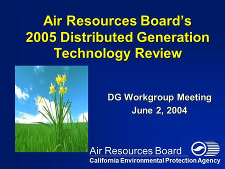 Air Resources Board's 2005 Distributed Generation Technology Review DG Workgroup Meeting June 2, 2004 California Environmental Protection Agency Air Resources.