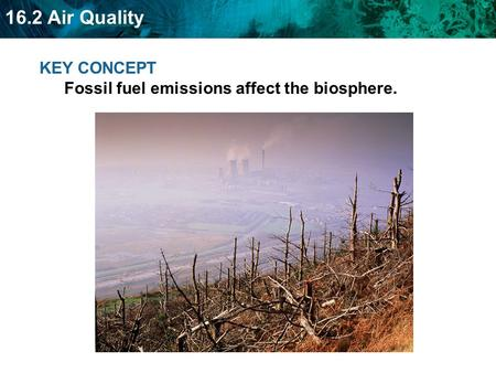 16.2 Air Quality KEY CONCEPT Fossil fuel emissions affect the biosphere.