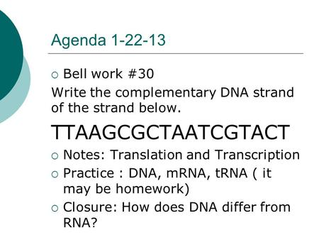Agenda 1-22-13  Bell work #30 Write the complementary DNA strand of the strand below. TTAAGCGCTAATCGTACT  Notes: Translation and Transcription  Practice.