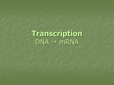 Transcription DNA  mRNA. Review What was the purpose for DNA replication? What was the purpose for DNA replication? So cell division (mitosis & meiosis)