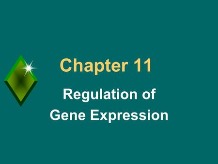 "Chapter 11 Regulation of Gene Expression. Regulation of Gene Expression u Important for cellular control and differentiation. u Understanding ""expression"""