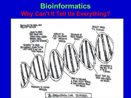 Bioinformatics Why Can't It Tell Us Everything?. Bioinformatics What are our Data Sets? Interested in information flow with cells Currently, the key information.
