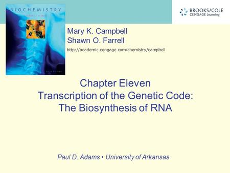 Paul D. Adams University of Arkansas Mary K. Campbell Shawn O. Farrell  Chapter Eleven Transcription of the.