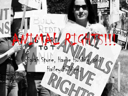 ANIMAL RIGHTS!!! Sarah Stone, Harlie Holding, and Hailey Holding.
