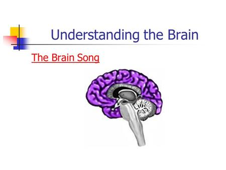 Understanding the Brain The Brain Song. The Brain Q & A T/F- People use only 10% of their brain. T/F- People with larger brains are more intelligence.