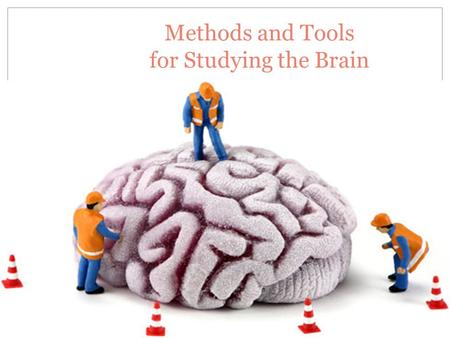 Methods and Tools for Studying the Brain. Early Methods Lobotomies and Shock Therapy …………