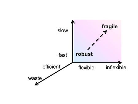 Slow flexible fast inflexible waste efficient fragile robust.