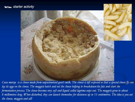  starter activity Casu marzu is a cheese made from unpasteurised goat's milk. The cheese is left exposed so that a special cheese fly can lay its eggs.