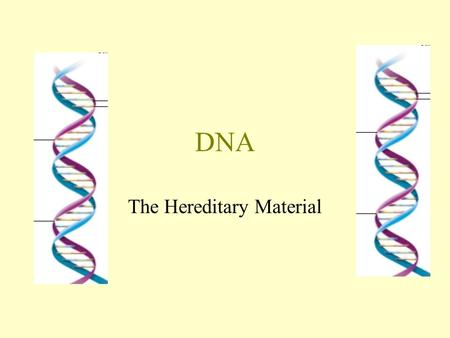 DNA The Hereditary Material. The Discovery of DNA 1869 – Friedrich Miescher investigated chemical composition of DNA using pus cells. At the time, proteins.