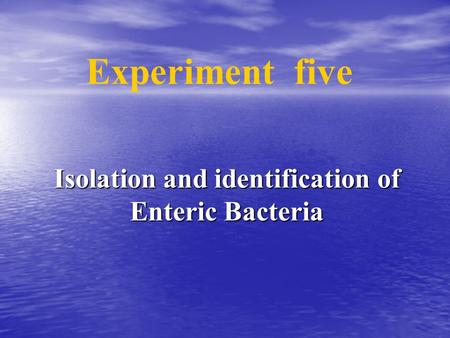 Isolation and identification of Enteric Bacteria Experiment five.