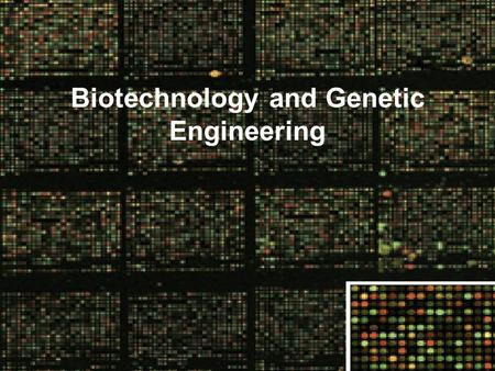 Biotechnology and Genetic Engineering. Human Cloning-The Science In The News.