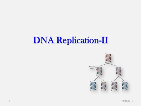 DNA Replication-II 17/10/20151. Overview I. General Features of Replication Semi-Conservative Starts at Origin Bidirectional Semi-Discontinuous II. Identifying.