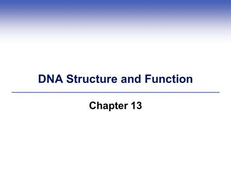 DNA Structure and Function Chapter 13. Early and Puzzling Clues  1800s: Miescher found DNA (deoxyribonucleic acid) by examining pus cells  Early 1900s: