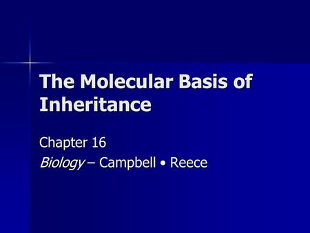 The Molecular Basis of Inheritance Chapter 16 Biology – Campbell Reece.