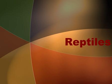 Reptiles. A short video about reptiles Al Listen for characteristics of reptiles. Be ready to share.