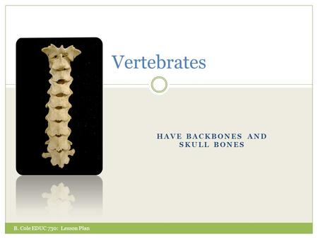 HAVE BACKBONES AND SKULL BONES Vertebrates B. Cole EDUC 730: Lesson Plan.