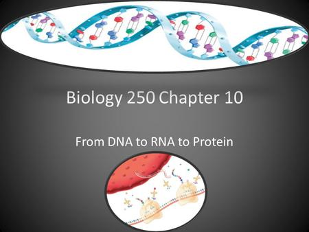 Biology 250Chapter 10 From DNA to RNA to Protein.