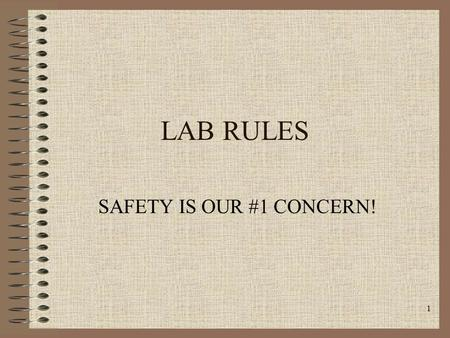 1 LAB RULES SAFETY IS OUR #1 CONCERN!. 2 RULE #1 Read lab procedures in advance to become aware of possible dangers.