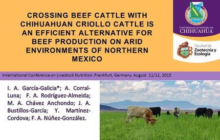 CROSSING BEEF CATTLE WITH CHIHUAHUAN CRIOLLO CATTLE IS AN EFFICIENT ALTERNATIVE FOR BEEF PRODUCTION ON ARID ENVIRONMENTS OF NORTHERN MEXICO International.