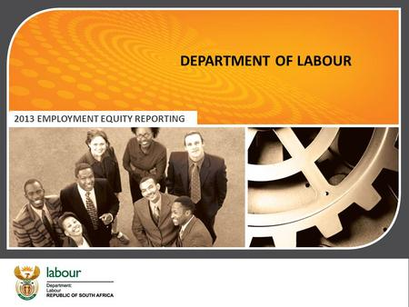 DEPARTMENT OF LABOUR 2013 EMPLOYMENT EQUITY REPORTING.