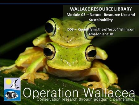 WALLACE RESOURCE LIBRARY Module 05 – Natural Resource Use and Sustainability D03 – Quantifying the effect of fishing on Amazonian fish WALLACE RESOURCE.