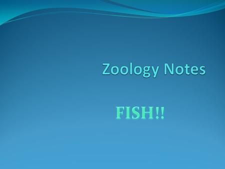 Our first focus…FISH In your own words, describe what makes a fish a fish.