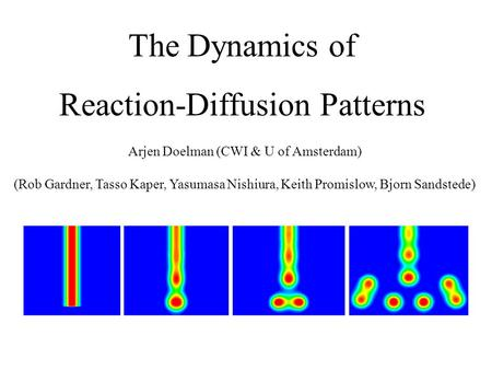 The Dynamics of Reaction-Diffusion Patterns Arjen Doelman (CWI & U of Amsterdam) (Rob Gardner, Tasso Kaper, Yasumasa Nishiura, Keith Promislow, Bjorn Sandstede)