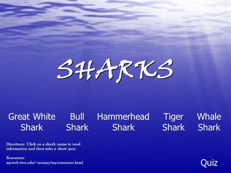 SHARKS Hammerhead Shark Great White Shark Tiger Shark Bull Shark Whale Shark Quiz Directions: Click on a shark name to read information and then take a.