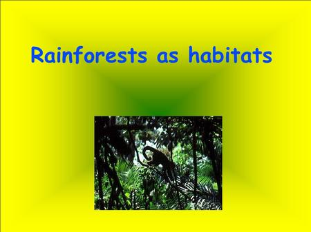 Rainforests as habitats. What are rainforests? Rainforests are very dense, warm, wet forests. They are habitats for millions of plants and animals. Rainforests.