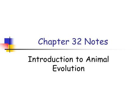 Chapter 32 Notes Introduction to Animal Evolution.
