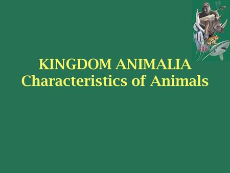KINGDOM ANIMALIA Characteristics of Animals. Picasso time! 3 minutes! Draw the first thing that comes to mind when you hear the word……. ANIMAL.